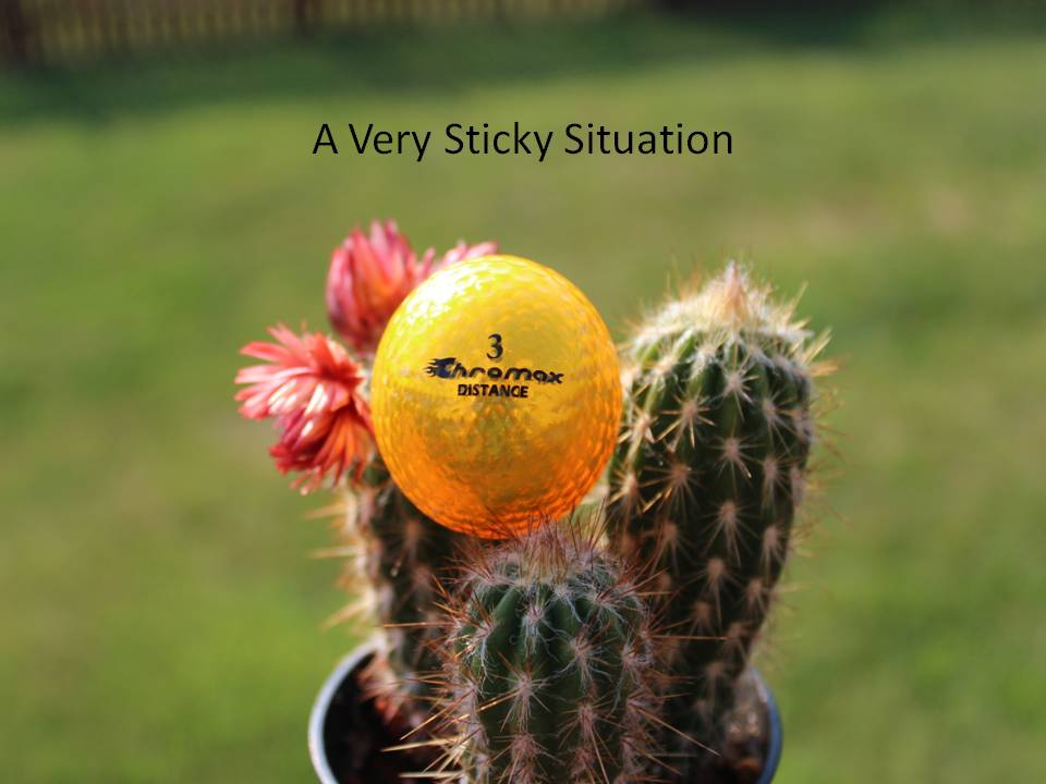 Sticky Situations